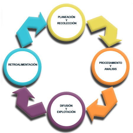 Imagen del ciclo de la investigación